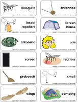 Word flashcards - Mosquitoes