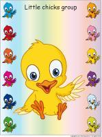 Group-identification-Little-chicks
