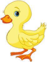 Models-Ducks