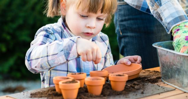 Planting seeds - Babies and toddlers - Educatall