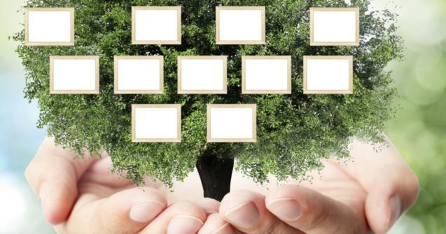 Tiny family tree - Arts and crafts - Educatall