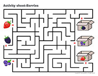 Activity sheets-Berries