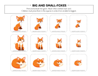 Big and small-Foxes