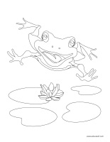 Coloring pages theme-Swamps