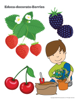 Educa-decorate-Berries-2