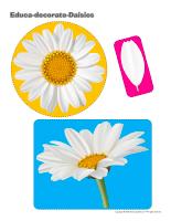Educa-decorate-Daisies