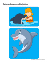 Educa-decorate-Dolphins-1