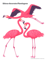 Educa-decorate-Flamingoes-1