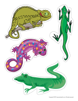 Educa-decorate-Reptiles-1