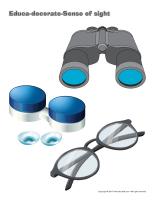 Educa-decorate-Sense of sight-1