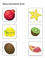 Educa-duo-Exotic fruit