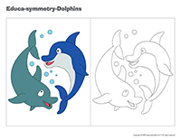 Educa-symmetry-Dolphins