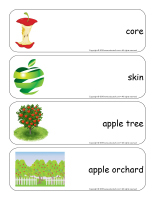 Giant word flashcards-Apples-2