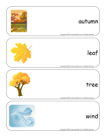 Giant word flashcards-Autumn-1