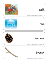 Giant word flashcards-Autumn-3