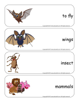 Giant word flashcards-Bats-2