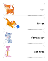 Giant word flashcards-Cats and kittens-1