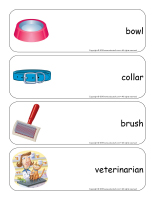 Giant word flashcards-Cats and kittens-3