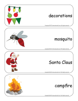 Giant word flashcards-Christmas in July-2