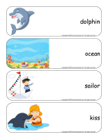 Giant word flashcards-Dolphins-1