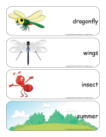 Giant word flashcards-Dragonflies-1