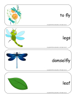 Giant word flashcards-Dragonflies-2