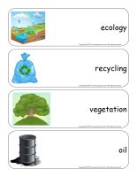 Giant word flashcards-Environment-2