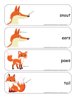 Giant word flashcards-Foxes-2