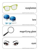 Giant word flashcards-Sense of sight-1