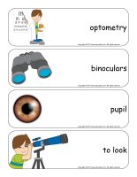 Giant word flashcards-Sense of sight-2