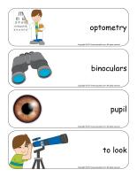 Giant word flashcards-Sense of sight-2
