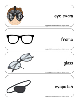 Giant word flashcards-Sense of sight-3