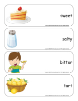 Giant word flashcards-Sense of taste-2