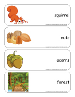 Giant word flashcards-Squirrels-1
