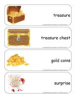 Giant word flashcards-Treasure-1
