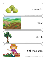 Giants word flashcards-Berries-2