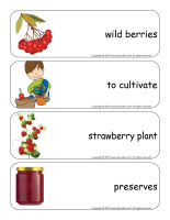 Giants word flashcards-Berries-3