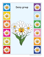 Group identification-Daisies