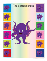 Group identification-Octopuses