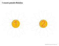 I count petals-Daisies