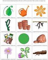 Magnifying-glass-game-Plants