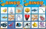 Bingo-The-ocean