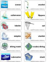 Word-flashcards-The-ocean