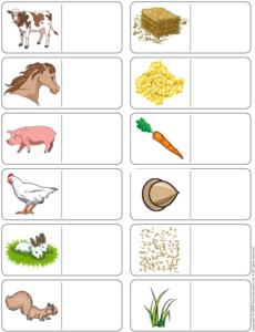 Farm Animals- Association game