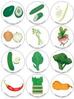 Story and memory game - Vegetables-