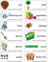 Word flashcards - The garden