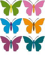 Butterfly race