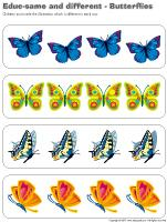 Educ-same and different - Butterflies
