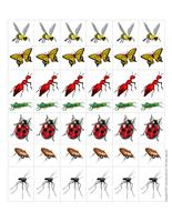 Tiny insects
