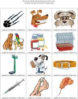 Magnifying glass game - Veterinarians